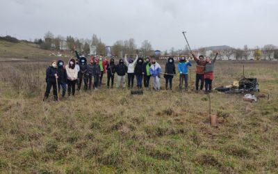 ¿Te animas a plantar 100 árboles?